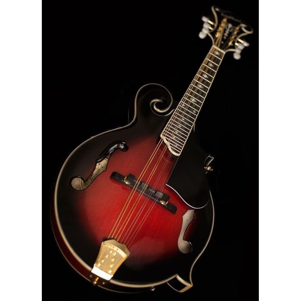 Washburn mandolin dating
