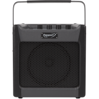 Fender PASSPORT® MINI Battery or AC powered Tiny PA System - Only 7 Pounds