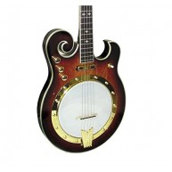Gold Tone EBM-5 Electric Banjo (Five String, Tobacco Sunburst)
