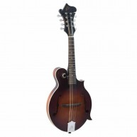 The Loar Model LM-310F-BRB Honey Creek Hand-Carved F-Style Mandolin , Brown