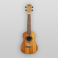 Puka Model PK-TFS Tropical Fish Rosette Natural Satin Finish Soprano Ukulel