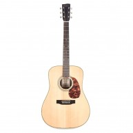 Recording King Deluxe All Solid Dreadnought Aged Adirondack Spruce/Rosewood