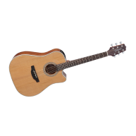 Takamine GD20CE-NS 6 String Natural Fin. Dreadnought Acoustic Electric Guit