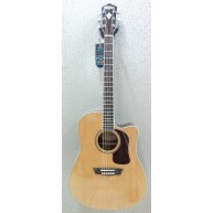 Washburn HD71SCEG-O Solid Cedar Top Dreadnought Acoustic-Electric Guitar