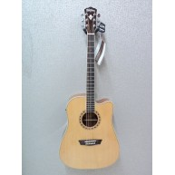 Washburn WD10CE 6 String Acoustic-Electric Dreadnought Guitar - Blem #B49