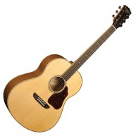 Washburn 135th Anniversary Limited Edition Super Auditorium Acoustic Guitar
