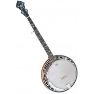 Dean Backwoods Model BW5 5 string Banjo with Mahogany Resonator - NEW PRICE