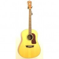 Washburn WSJ50SKELITE Solid Top Southern Jumbo Acoustic Guitar W/Case - Ble