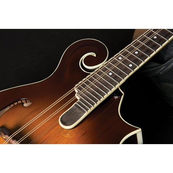 Washburn LTD TCMF43SWK Timeless Collection F Style Mandolin with Case - BLEM