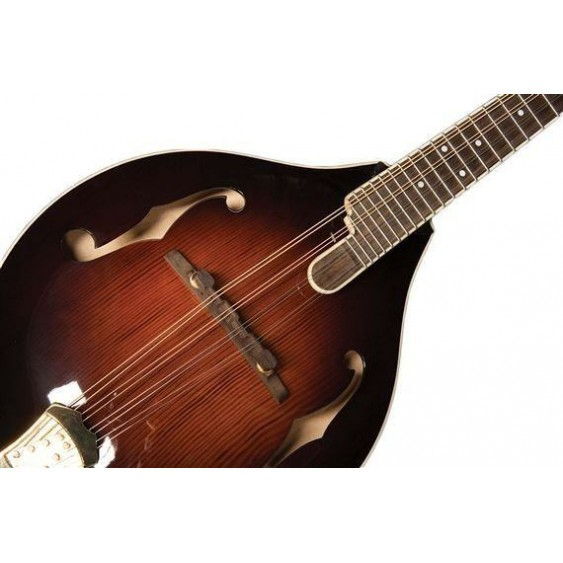 Washburn LTD TCMA43SWK Timeless Collection A Style Mandolin with Case - BLEM