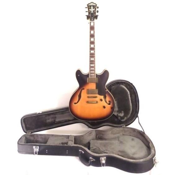 washburn hb36k vintage style hollow body electric guitar 335 w case blem 4130. Black Bedroom Furniture Sets. Home Design Ideas